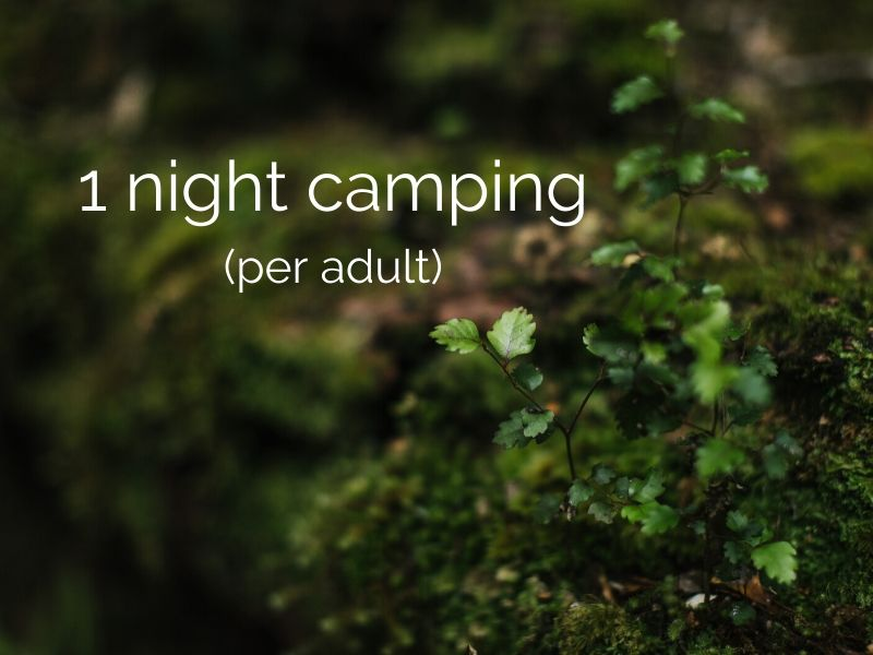 1 night overnight camping (per adult)