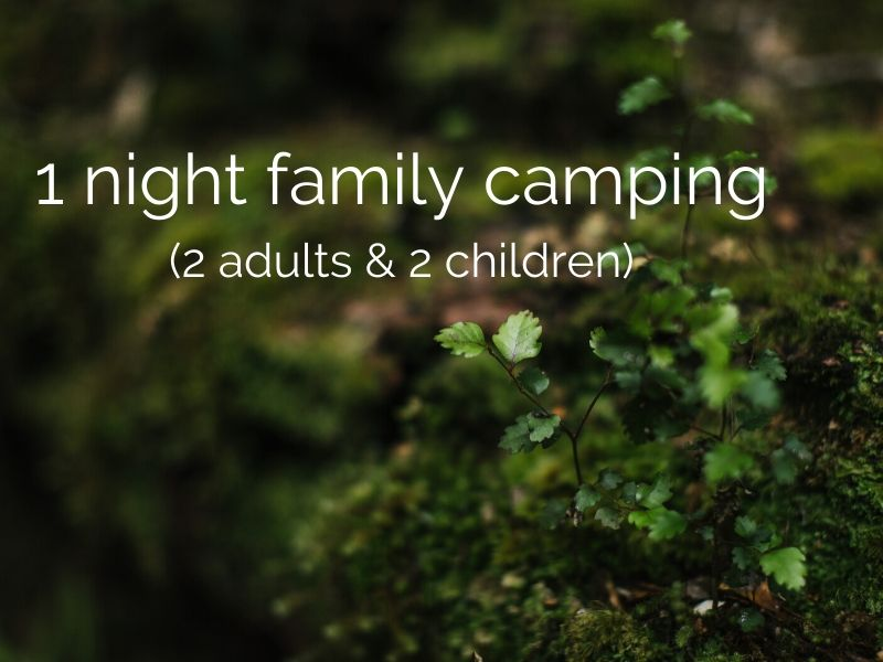1 night family camping (2 adults & 2 children)