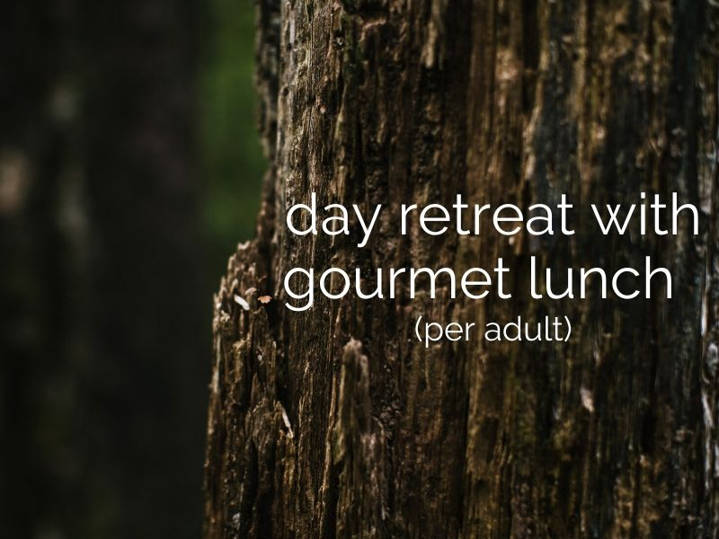 day retreat with gourmet lunch or dinner (per adult)