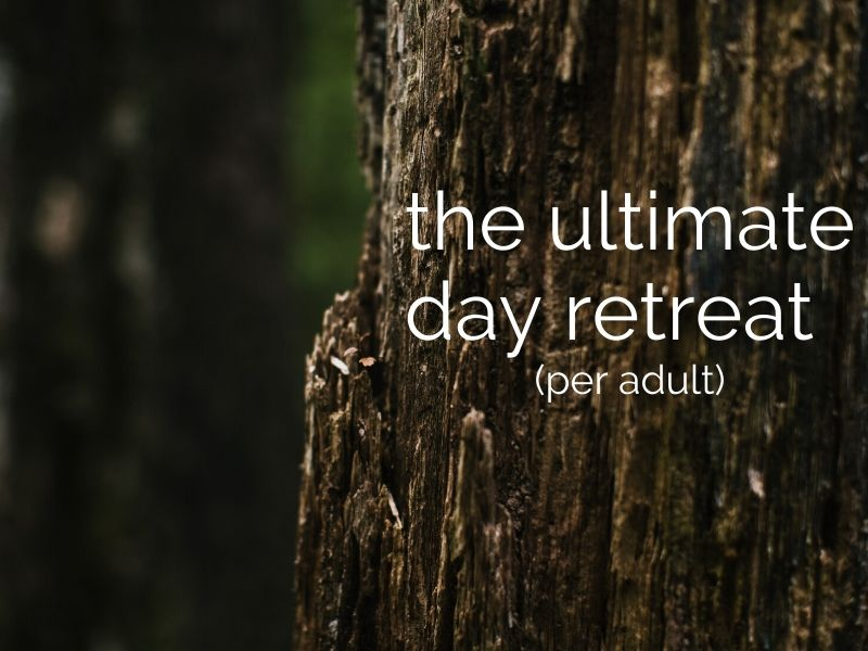 day retreat with gourmet lunch & massage (per adult)