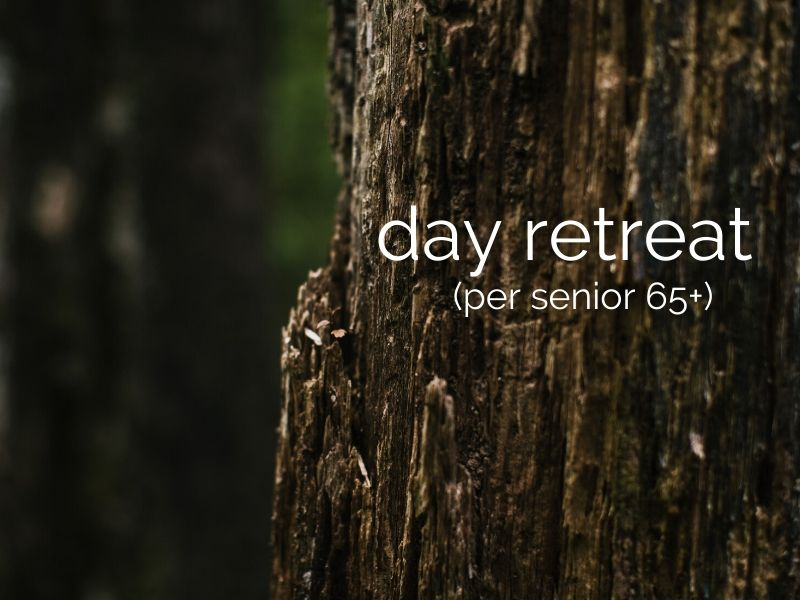 day retreat (per senior 65+)