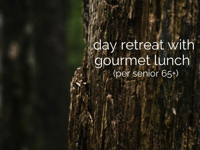 day retreat with gourmet lunch (per senior 65+)