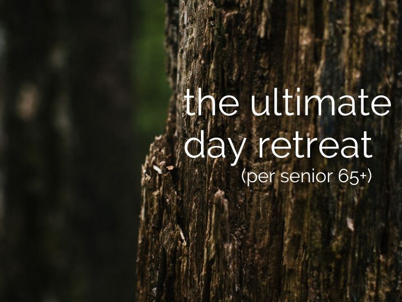 day retreat with gourmet lunch & massage (per senior 65+)